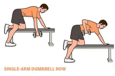 One Arm Dumbbell Row Without Bench 28 Images Upper Back Posture Exercises Page 3