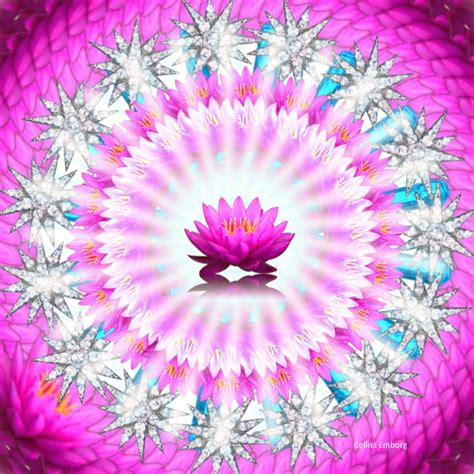 imagenes mandala del amor mandala del amor celina emborg