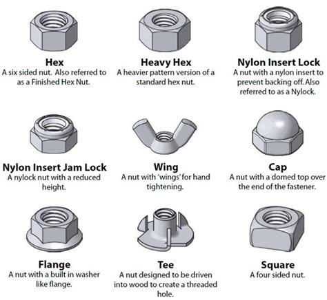 17 Best Images About Politics On Politics Nut - 17 best images about nuts and bolts on bench