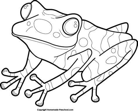coloring page poison dart frog free dart frog coloring pages