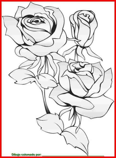 imagenes de flores reales para imprimir 1000 images about flores on pinterest patrones natal