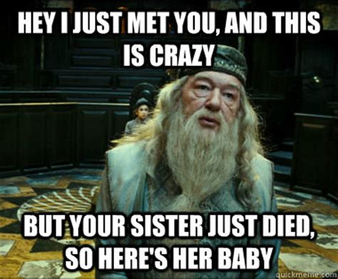 Crazy Sister Meme - hey i just met you and this is crazy but your sister just