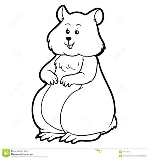 child color coloring book for children hamster animal stock vector