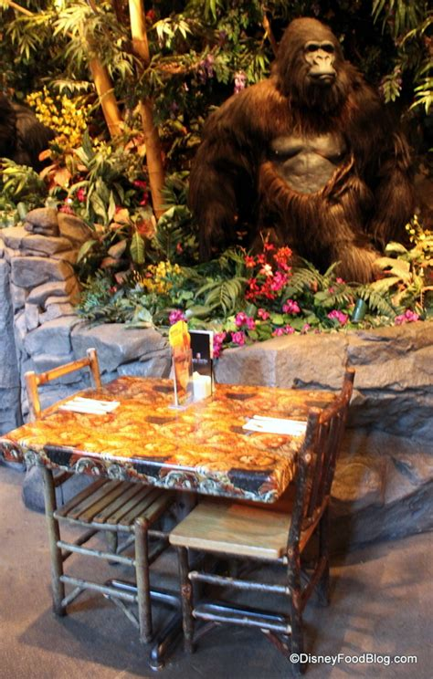 rainforest cafe light up cup lava lounge opens at rainforest caf 233 in disney