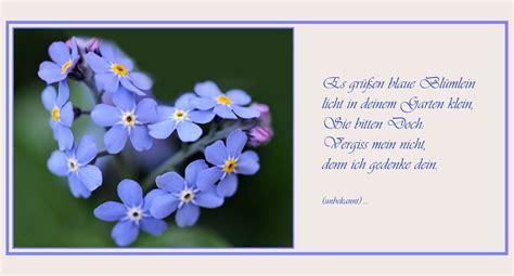 Blume Vergiss Mein Nicht 3822 by Vergissmeinnicht Karte Creactie