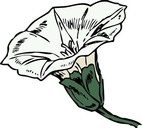 mature flower diagram clip art at clkercom vector clip top larkspur flower drawing images for pinterest tattoos