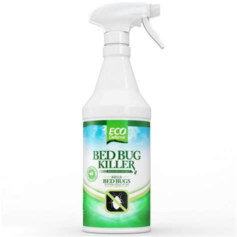 spray for bed bugs don t bring home these unwanted guests when traveling