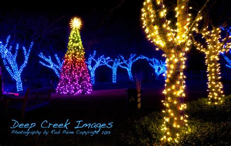 lighting up the holiday season at meadowlark botanical