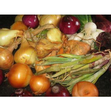 Comment Planter L Oignon by Planter L Oignon Clisson Leader Fran 231 Ais De Semences