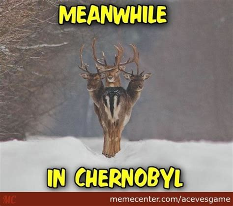 Deer Memes - three memes best collection of funny three pictures