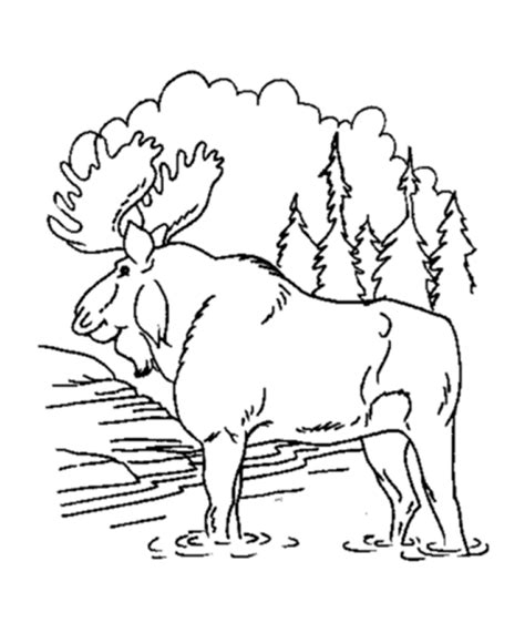 if you give a moose a muffin coloring pages 18996