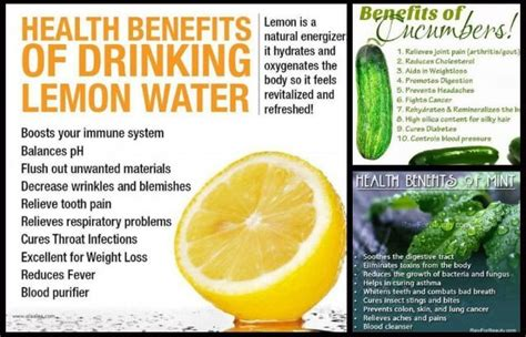 Benefits Of Detox Water In by Benefits Of Lemon Cucumber Or Mint Water Health
