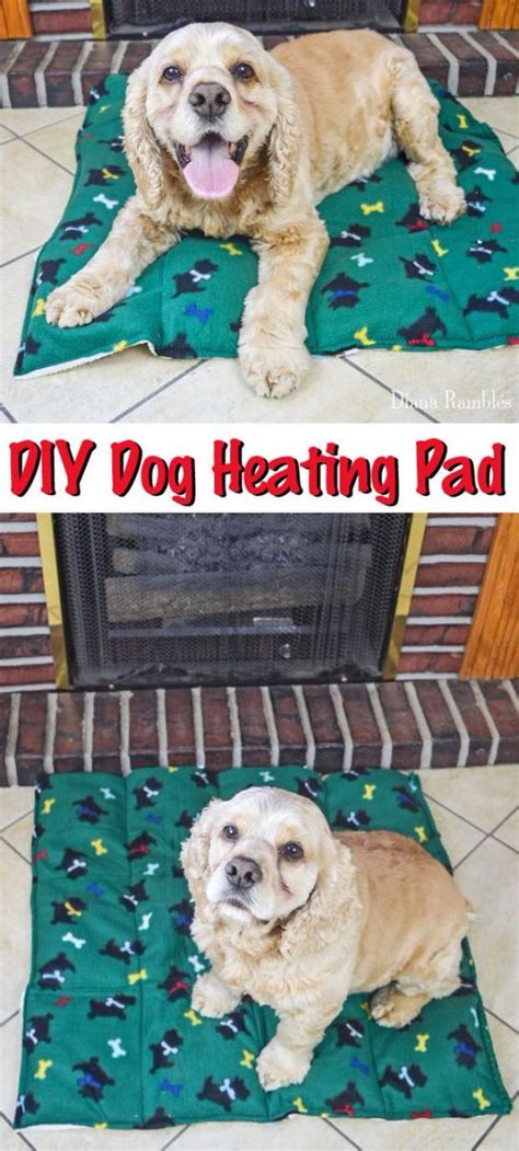 puppy pad holder diy 33 hacks you need to try today page 3 of 5 diy