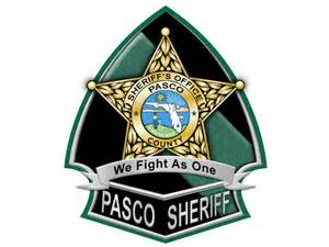 pasco sheriff roads closed after sinkhole opens