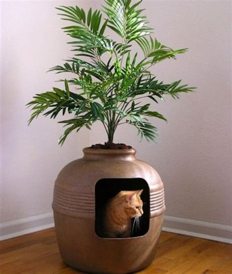 litter box planter 15 coolest litter boxes 15 litter planter box