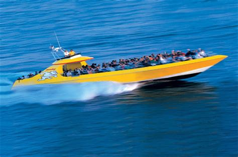 boat tour baltimore seadog speedboat adventure baltimore toursales