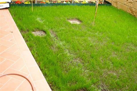 impianto di irrigazione giardino impianto irrigazione giardino impianto irrigazione