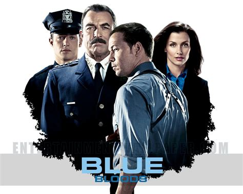 blue bloods mind blowing hidden relationships you never noticed in