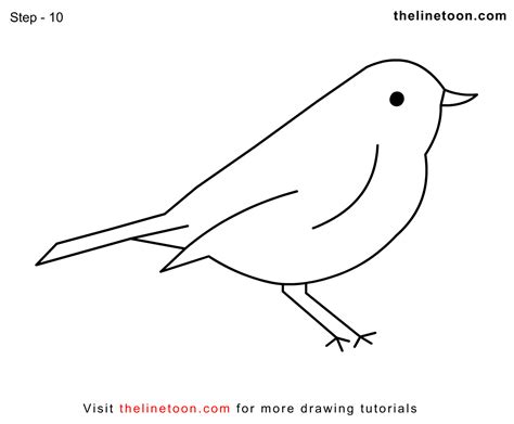 how to draw doodle birds how to draw tweety pie the bird simple step by drawing