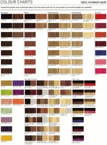 lanza hair color chart lanza professional hair color chart pictures to pin on