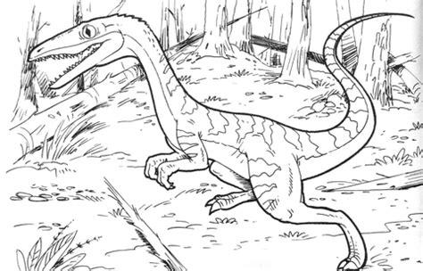 ausmalbild coelophysis bauri dinosaurier ausmalbilder kostenlos zum ausdrucken