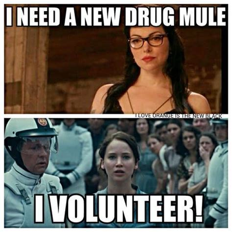 Funny Drug Memes - pin by cassidy etter on orange is the new black