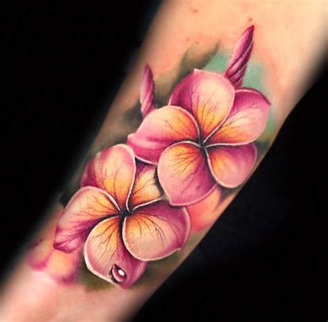 plumeria tattoo designs 25 best ideas about plumeria on