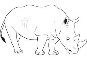 rhino coloring page tag rhino coloring pages printable coloring pages