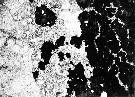 calcite in thin section thin section across margin of magnetite bodies shown in