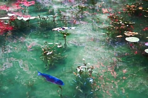 pond  monet travel japan