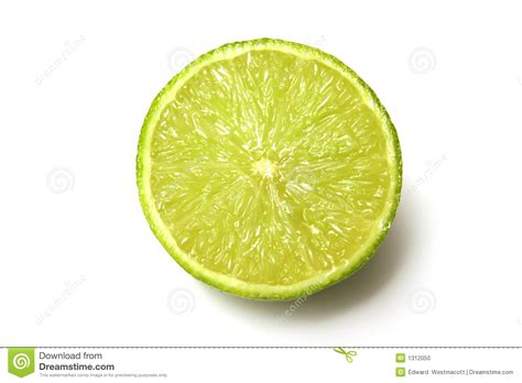 fruit section lime fruit cross section stock photo image 1312050