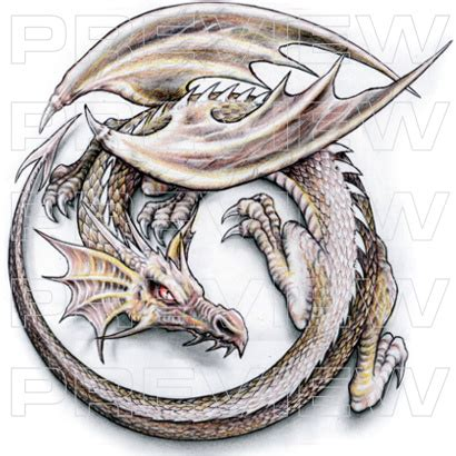 dragon fairy tattoo designs tattoovox award winning designs winged