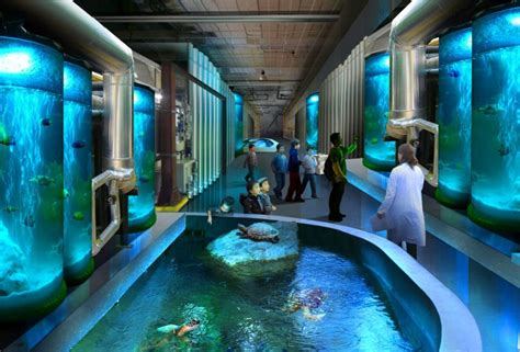 aquarium design concept foster partners national museum of marine science and