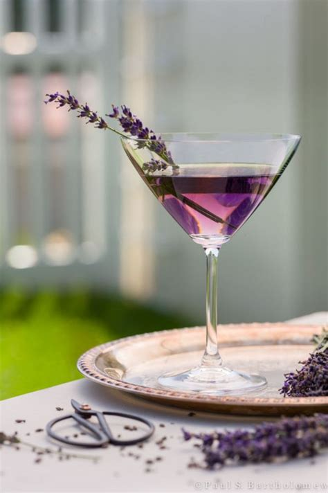 lavender cocktail lavender martini gin drinkwire