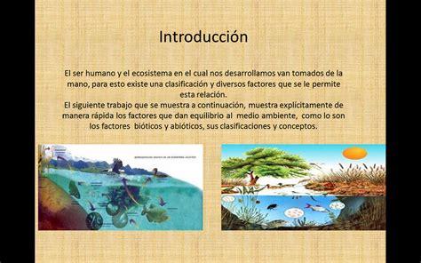 ecolog a y medio ambiente en el blog verde blog sobre ecologia y medio ambiente cuadro sin 243 ptico factores del