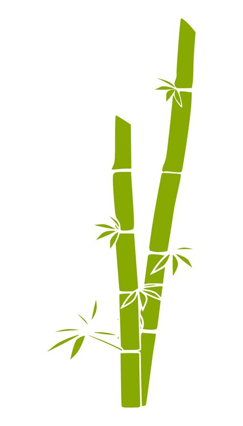 bamboo clip bamboo grass tree 114 555px png clipart best clipart best