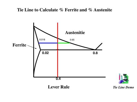 tie lines phase diagram ppt phase diagrams and tie lines powerpoint presentation