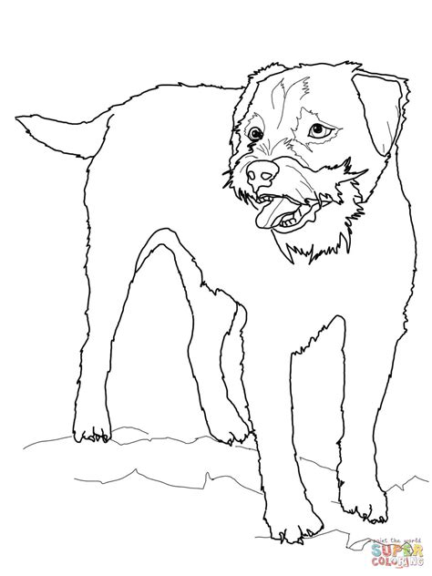 Cairn Terrier Coloring Page Super Coloring Dog Breeds Terrier Coloring Pages