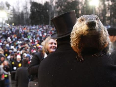 groundhog day german title groundhog day quiz how well do you this february 2nd