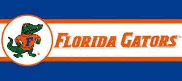 Football Rugs Field Florida Gators 7 Quot Tall Wallpaper Border