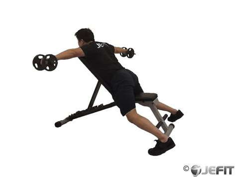 dumbbell bench flyes dumbbell reverse flyes with external rotation exercise