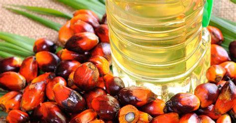 Minyak Kelapa Sawit Turun permintaan terhadap minyak sawit malaysia dijangka pulih