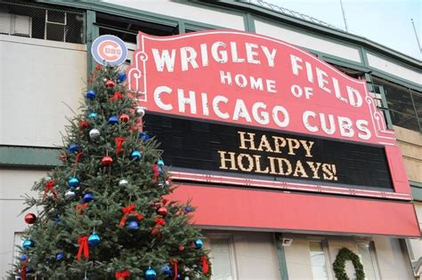 new year activities for cubs 17 best images about chicago cubs on cubs