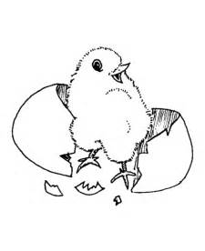 Easter chick coloring pages baby chick easter coloring pages