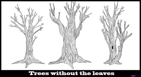 draw a tree how to draw trees step by step trees pop culture free