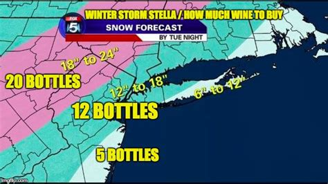 Snow Storm Meme - winter storm stella wine imgflip
