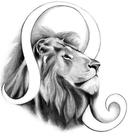 child create a sketch leo lion tattoo design wonderful