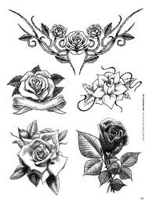 farfalla nera in casa significato flores