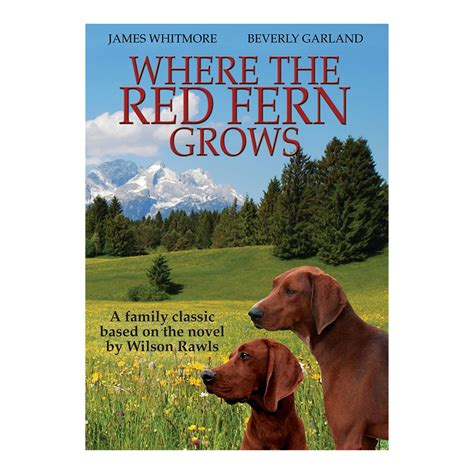 printable version of where the red fern grows where the red fern grows dvd tim green ministries online