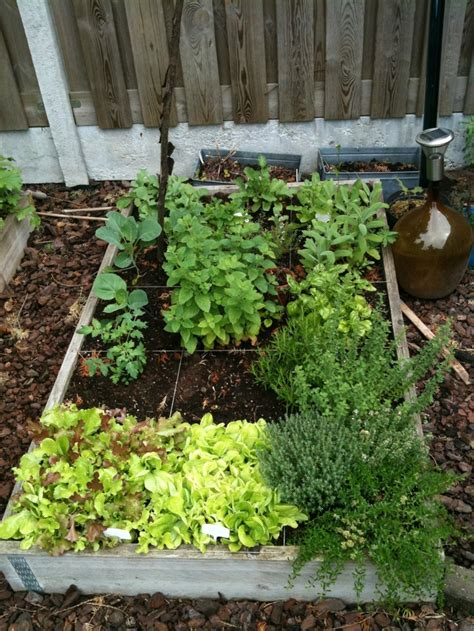 Square Foot Gardening Ideas Square Foot Gardening Gardening Ideas Pinterest Square Square Foot Gardening And Tuin